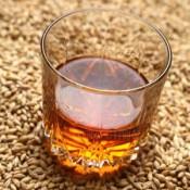 Солод для виски